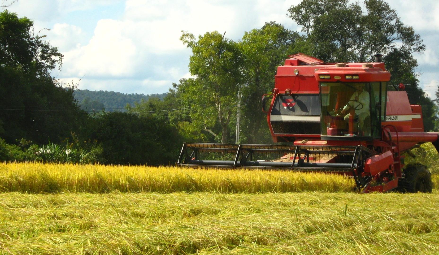 setor do agronegócio